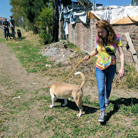 TCAPS students help in Mexico