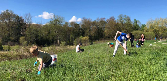 Annual Greenagers Project